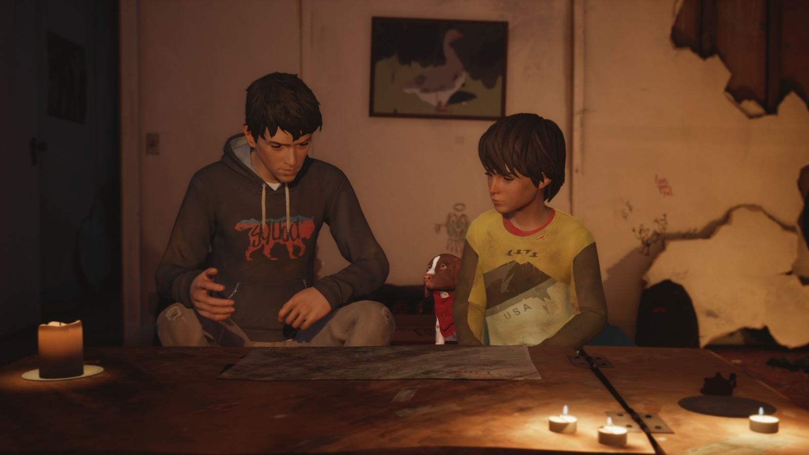 Life is Strange 2: Rules; gameplay: plány