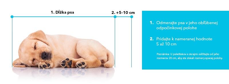 Ako zmerať psa pri výbere pelechu
