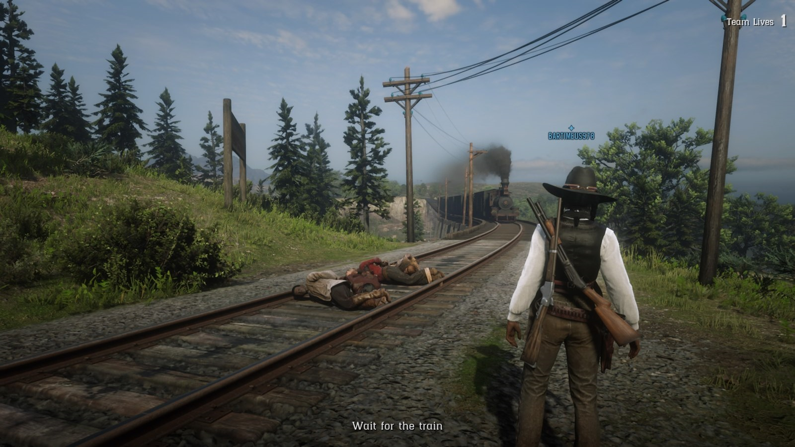 Red Dead Online; gameplay: úloha