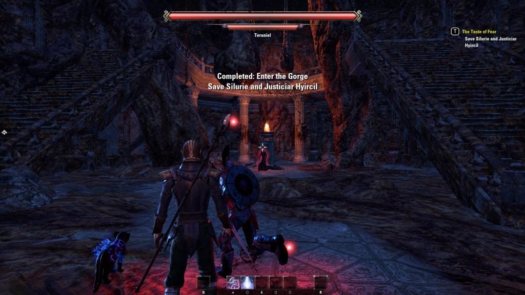 The Elder Scrolls Online: Summerset; gameplay: kobka