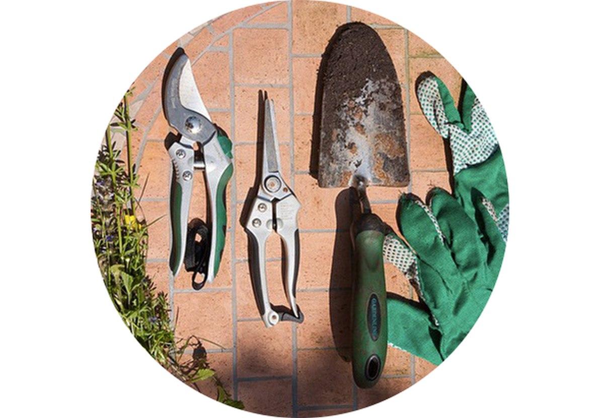 Záhradný kalendár: Máj na záhrade