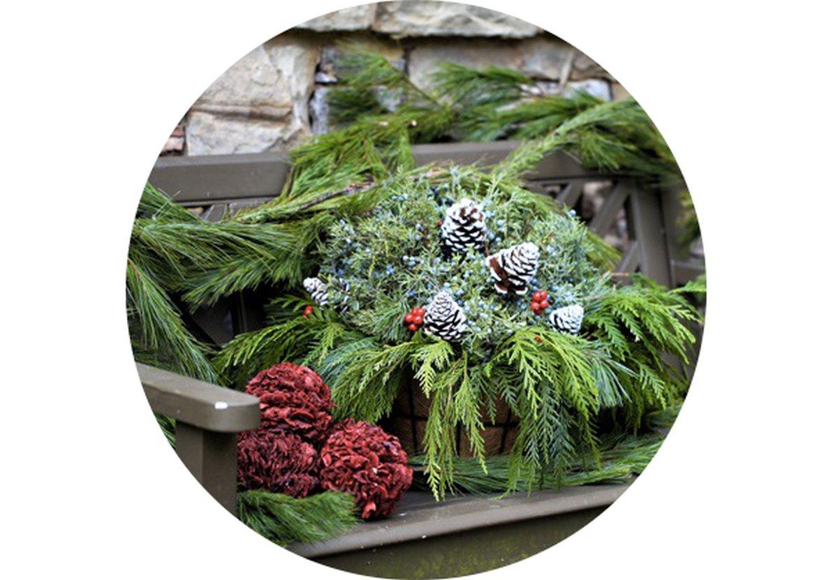 Záhradný kalendár: December na záhrade