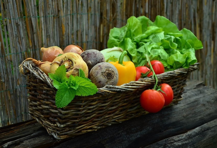 Zelenina v auguste