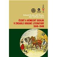 Český a německý sedlák v zrcadle krásné literatury 1848-1948 - Eduard Kubů, Jiří Šouša, Aleš Zářický