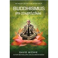 Buddhismus pro zaneprázdněné - David Michie