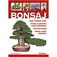 Bonsaj - Petr Škvor