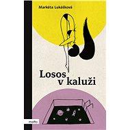 Losos v kaluži - Markéta Lukášková