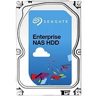 Seagate Enterprise NAS HDD 8000GB - Pevný disk