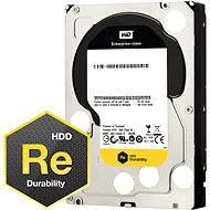 WD RE4 1000GB 64MB cache - Pevný disk