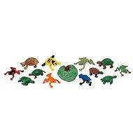 Tuba - Žaby a korytnačky - Herná súprava