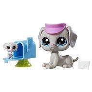 Littlest Pet Shop Maminka s miminkem a doplňky Bill Weimaran - Zvieratko