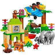 LEGO DUPLO 10804 Džungľa - Stavebnica