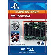 12000 NHL 18 Points Pack - PS4 SK Digital