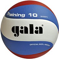 Gala Training BV5561S - Volejbalová lopta