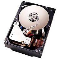 "Lenovo System x 3.5 ""HDD 1TB 6G NL SATA 7200 ot. G2 Simple Swap - Serverový disk"