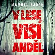V lese visí anděl [Audiokniha]