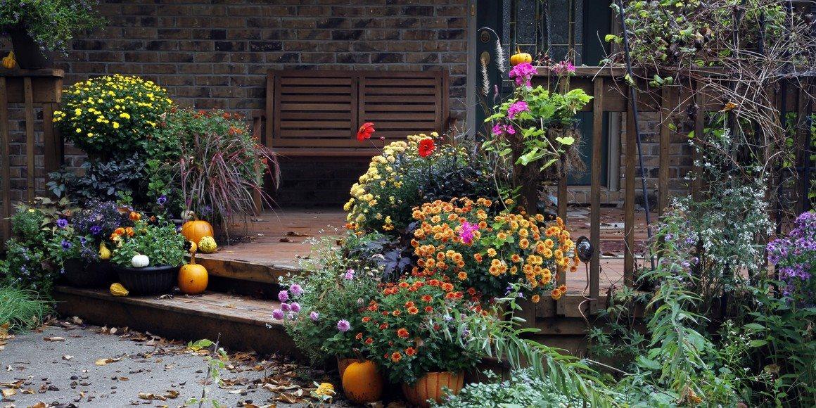 September na záhrade