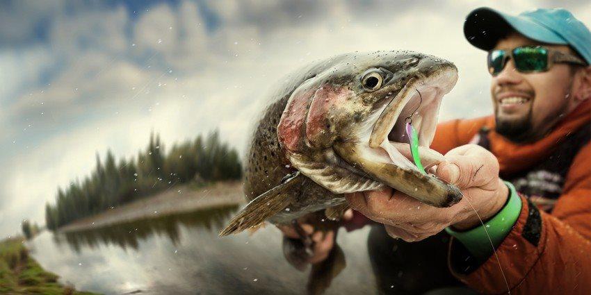 Ako chytať ryby